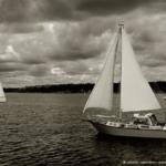 L'arcipelago di Stoccolma visto dalla barca che porta all'isoletta chiamata Grinda